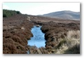 Sally Gap in Widlow Mountains, click here..