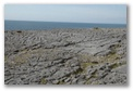Burren coastline, click here..