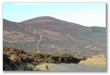 Mount Melleray - Cappoquin to Clonmel, click here..